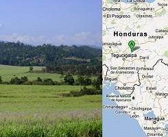 MIZ µ-BioRefinery™ (Hondura..